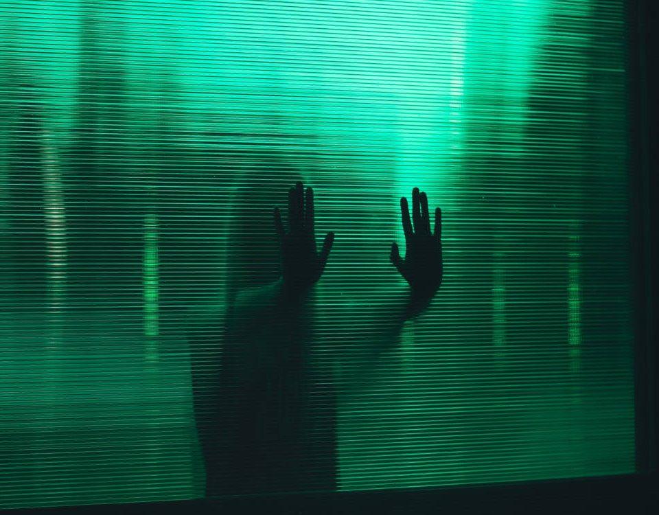 Werner Boote porta sul grande schermo gli inganni del greenwashing